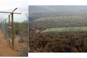 Diez estudios sobre desiertos revelan que las lluvias son determinantes en ecosistemas semiáridos